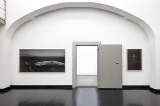 """""""Journey to the Center of the Earth""""- """"Viaggio al Centro della Terra"""", installation view"""