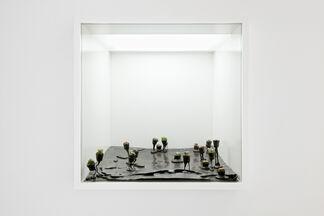 Adrien Missika – Alien Verein @ Der Würfel, installation view