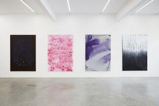 Ziggy Grudzinskas | I Can because You Do, installation view