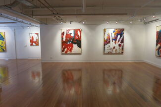 Anthony White | Crossing the Rubicon, installation view