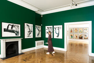 The Suggestionists, installation view