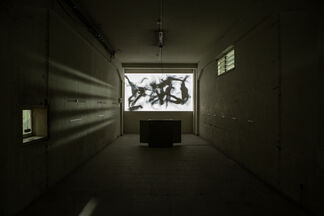 INVESTMENT OPPORTUNITIES, installation view