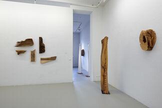 Entkernen (pitted), installation view