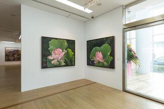 Mountains of the Four Seasons – Liu De-Lang Solo Exhibition, installation view