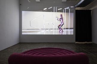 Health Show II, installation view