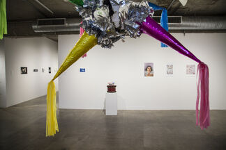 Origins of the Self, installation view