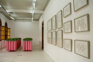 CULTIVO ZONIFICADO - Julen Birke, installation view