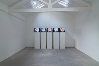 A is for Analogue, installation view