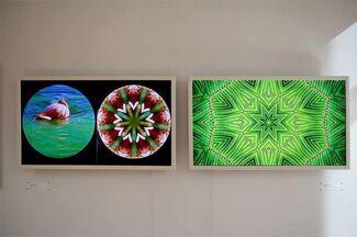 Digital Art: (R)evolution, installation view