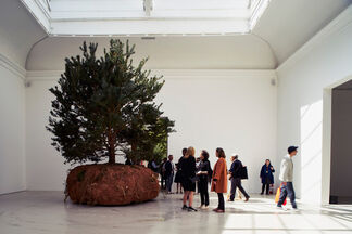 French Pavilion, installation view