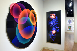 Luminous, installation view