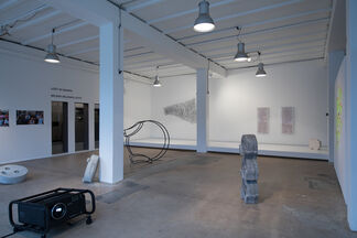 Milena Milosavljevic –LOST IN SWARM, installation view