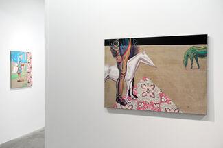 Rutger Brandt Gallery at VOLTA13, installation view