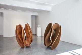Gianpietro Carlesso, Variazioni, installation view