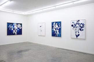 RYAN WALLACE: Do Make Say Think, installation view