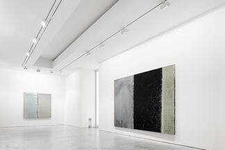 Pat Steir. Self Portrait Installation: 1987-2018 and Paintings, installation view