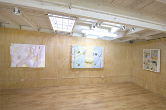 CARA CHAN | A PART OF THINGS, installation view