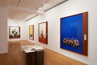 Taryn Simon: Portraits and Surrogates, installation view