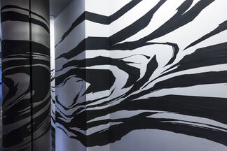 Space Drawing by Sun K. Kwak, installation view