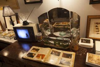 John Brill: Every Boy's Dream, installation view