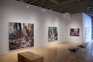 """Michael Smith """"Fugitive Ground"""", installation view"""