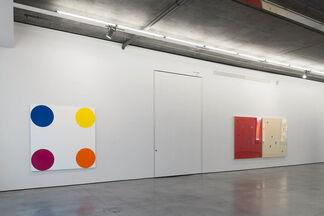 Damien Hirst, installation view