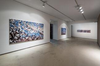 Winter Flower, installation view