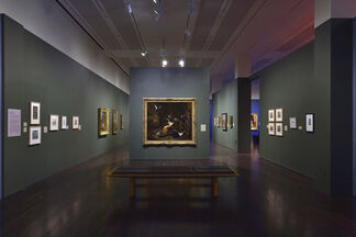 In the Company of Cats and Dogs, installation view