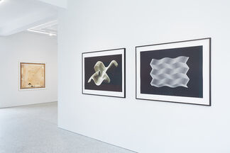 Steina and Woody Vasulka, installation view
