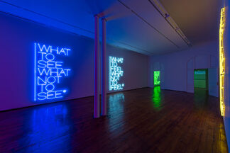 What to see what not to see, installation view