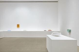 Nicolas Deshayes, Swans, installation view