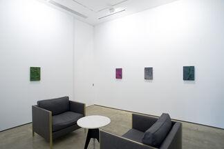Tony de los Reyes: Border Theory, installation view