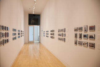 Barbara Rossi: Poor Traits, installation view