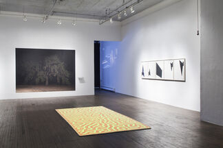 Wave & Particle: A Group Exhibition Celebrating the 15th Anniversary of Creative Capital, installation view