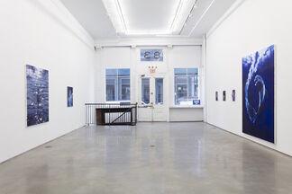 """Sam McKinniss - """"Egyptian Violet"""", installation view"""