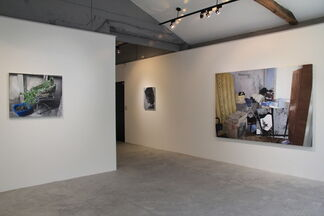 Ana Maria Micu: Self-portrait with Indoor Plant, installation view