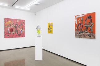 Daniel Jensen & Mark Posey: Happy Depression, installation view