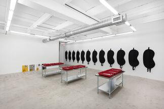 Amanda Ross-Ho: STOP BATH, installation view