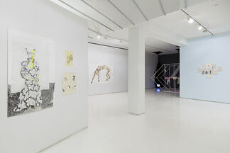 Crossing the Line:  Contemporary Drawing and Artistic Process, installation view