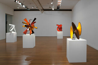 James Angus, 2013, installation view