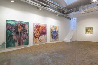 Andrej Dúbravský | Birds and Winds 2, installation view