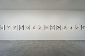 Yinka Shonibare MBE:  Making Eden, installation view