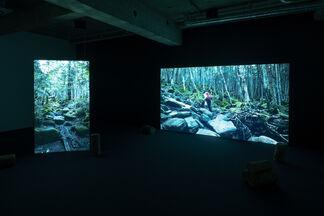 Mai Yamashita + Naoto Kobayashi | Nature Observation, installation view