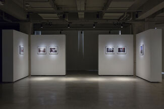 Moriyama Daido: Light Comes Agian, installation view