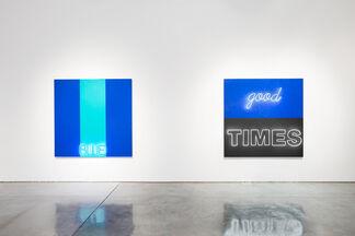 Deborah Kass: No Kidding, installation view