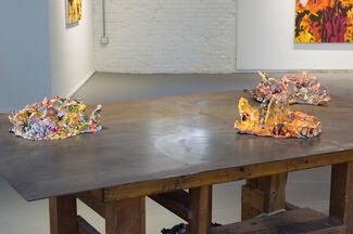 False Indigo, installation view