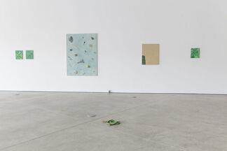 Something Green, installation view