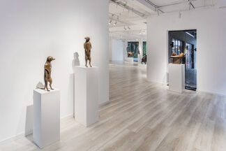 """Daniel DAVIAU - """"Animal Beauty"""", installation view"""