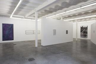 Birde Vanheerswynghels / The cat with nine lives, installation view