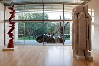 Tony Cragg: Seeing Things, installation view